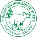 logo fundacion horizonte verde 2